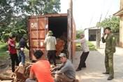 Dân làng gắn camera, hàn thùng container bảo vệ gỗ cây sưa trăm tỉ