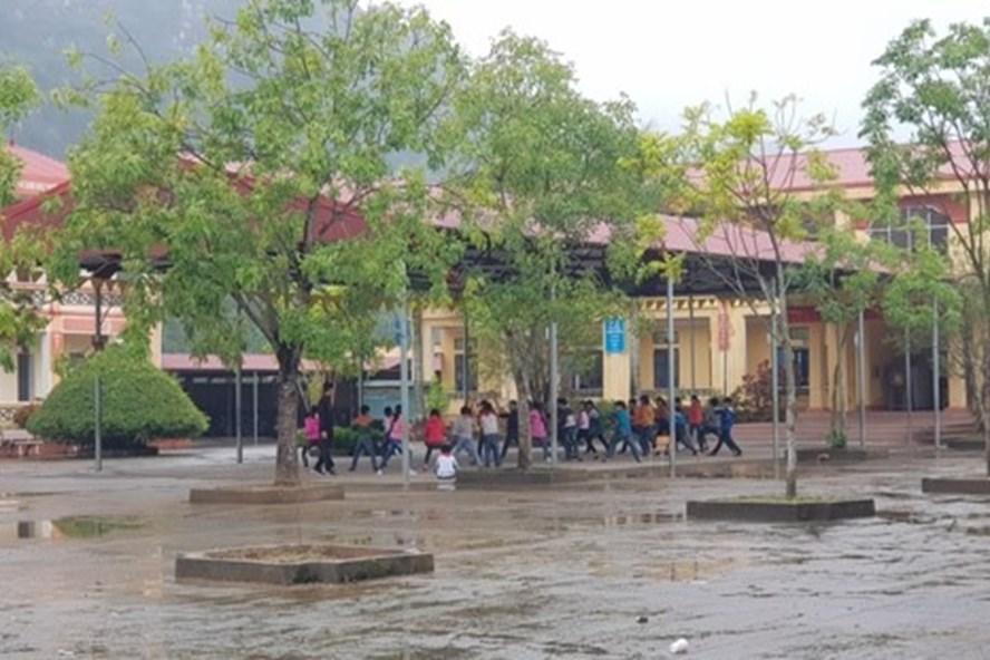 Sân Trường tiểu học Ninh Xuân nơi 12 học sinh bị chó cắn. Ảnh: NT