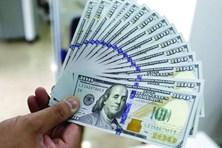 Tỷ giá ngoại tệ 20.10: USD lao dốc, có nên nhanh tay bắt đáy?