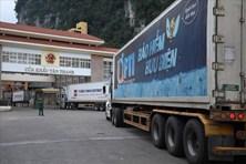 """Xe container ùn ở cửa khẩu: Thanh long """"nằm"""" điều hoà, tài xế dãi nắng"""