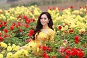 Mỹ nhân Bolero Hà Thành khoe sắc rực rỡ bên vườn hoa xuân