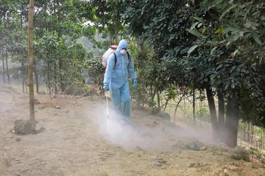 Ngành thú y Lào Cai phun khử trùng tiêu độc tại huyện Bảo Thắng. Ảnh: Thúy Phượng