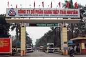 Rà soát hợp đồng tại Công ty Gang thép Thái Nguyên để khởi kiện