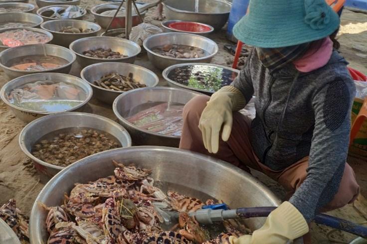 """""""Phát thèm"""" với hải sản tươi nướng than hồng biển Hồ Tràm"""
