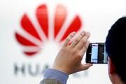 Huawei nhận thêm cú sốc: Gã khổng lồ Microsoft dừng hợp tác