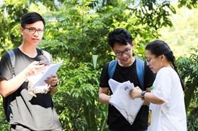 Đáp án môn Tiếng Anh mã đề thi 415 kỳ thi THPT quốc gia 2019