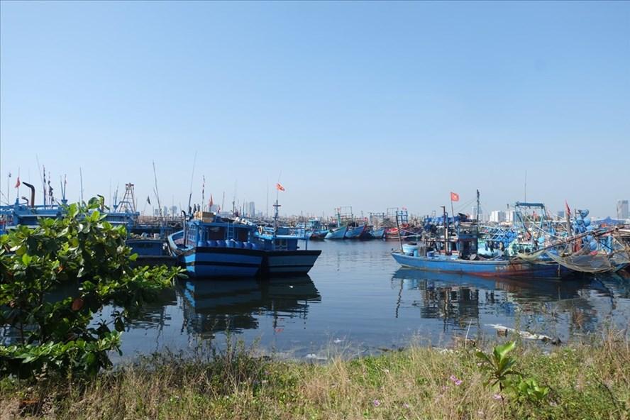 Một góc âu thuyền Thọ Quang, TP Đà Nẵng. ảnh: H.Vinh