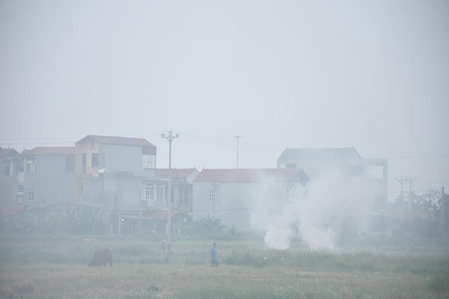Hình ảnh thường thấy sau mỗi vụ gặt tại các huyện ngoại thành và vùng ven đô Hà Nội. Ảnh: PV