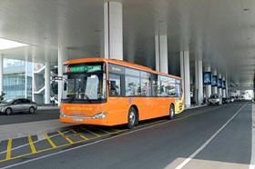 Hà Nội: Nhiều đối tượng sử dụng miễn phí phương tiện vận tải công cộng