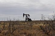 Giá xăng dầu hôm nay 8.8: Tăng trở lại sau khi mất 4% phiên trước đó