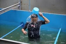 Khoảnh khắc chuyên gia Nhật thoả thích bơi lội dưới sông Tô Lịch