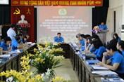 LĐLĐ Thái Bình báo cáo kết quả hoạt động tổ chức công đoàn