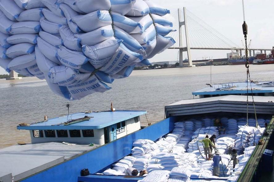 Chỉ thị của Thủ tướng Chính phủ về chiến lược xuất khẩu gạo, đặt mục tiêu đến năm 2030, tỉ lệ xuất khẩu gạo chất lượng cao như gạo thơm, gạo đặc sản, japonica... chiếm 40%. Ảnh: A.C